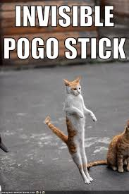 Invisible Cat Memes - invisible pogo stick cat meme cat planet cat planet
