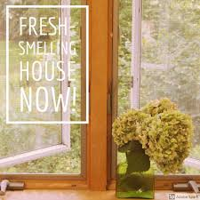 12 ways to make your home smell fabulous dengarden