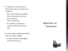 adjectives in sentences verbs adjectives 9th grade ppt