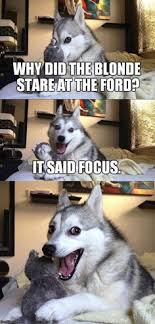 Ford Focus Meme - ford focus car memes pinterest ford focus ford and memes