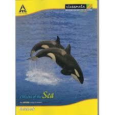 classmate note book classmate 180 pages