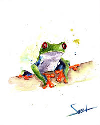 eyed tree frog watercolor print abstract paintings