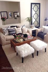 Modern Home Decor Cheap Decorations Cheap Apartment Decorating Ideas For Guys Living Room