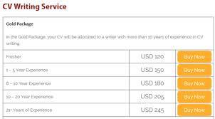 CV Writing Service Dubai   Resume Writing Services Dubai