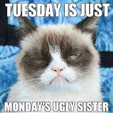 Funny Memes About Monday - tuesday is just mondays ugly sister funny meme monday humor