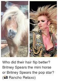 Hair Flip Meme - who did their hair flip better britney spears the mini horse or