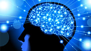 light up your brain here s how meditation actually affects your brain newsmobile