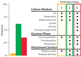 bioreactor design for adherent cell culturebioprocess international