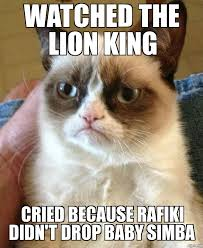 grumpy cat weknowmemes generator