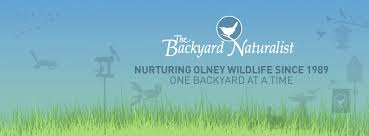 The Backyard Ashes The Backyard Naturalist Home Facebook