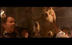belgian malinois in movies screenshot gallery 4 reel dogs