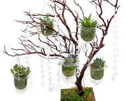 Manzanita Tree Centerpieces White Wedding Manzanita Tree Centerpieces White Christmas