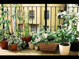 Ideas For Balcony Garden Small Balcony Garden Ideas