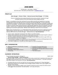 Resume Category Examples by 24 Best Best Marketing Resume Templates U0026 Samples Images On