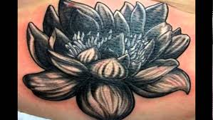 beautiful lotus flower designs