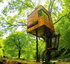 treehouses built by architects treehouse design ideas thrillist
