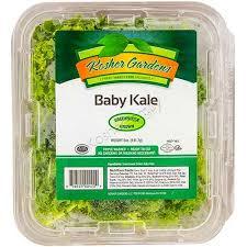 kosher for passover baby food kosher gardens baby kale pack 5 oz passover kosherfamily