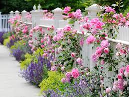 garden design garden design with modern style garden trellis for