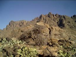 Florida mountains images Deming nm in the florida mountains deming nm photo picture jpg