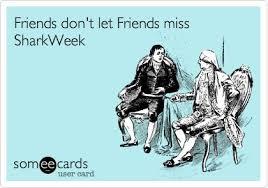 Shark Week Meme - share these five funny memes for shark week mama bees freebies