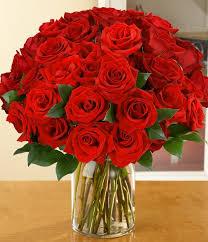 3 dozen roses dozen roses