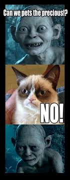No Meme Grumpy Cat - the grumpiest grumpy cat memes to sadden your day snappy pixels