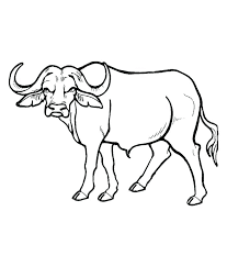 goat mask coloring page african masks coloring pages masks coloring sheets mask coloring