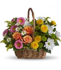 sympathy basket teleflora s sweet tranquility basket sympathy in caldwell id
