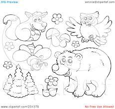 99 ideas forest animals coloring page on www gerardduchemann com