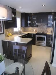 small contemporary kitchens design ideas contemporary kitchen design ideas houzz design ideas