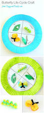 butterfly life cycle paper plate craft life cycle craft
