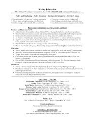 Sle Resume Objectives Tech resume objective exles for sales sugarflesh