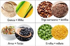 alimentazione ricca di proteine lettera vegetariano ricco di proteine