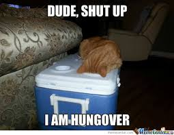 Hangover Meme - hangover memes best collection of funny hangover pictures