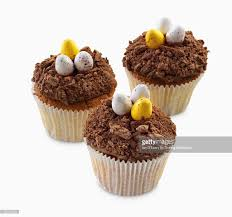 chocolate dinosaur egg cupcakes decorated with dinosaur eggs stock photo getty images