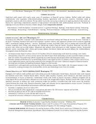 Business Analyst Resume Template Word Esl Masters Expository Essay Examples Professional Profile On
