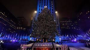 christmas tree lights up at rockefeller center