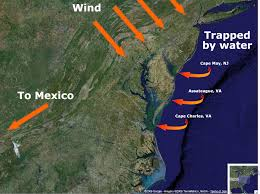 Atlantic Coast Map Geography And Monarch Migration Why Do Monarchs Hug The Atlantic