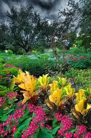 332 best real gardens to visit images on pinterest botanical
