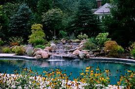 garden modern backyard design with waterfall and garden also pool