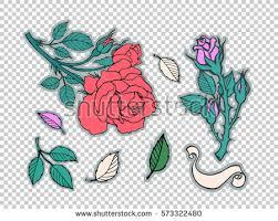 love rose stock images royalty free images u0026 vectors shutterstock