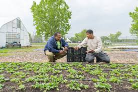 family garden trains making change for family farmers our grantees 6 months in u2013 farm aid