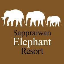 image bureau de vote sappraiwan elephant resort ทร พย ไพรว ลย ร สอร ท inicio
