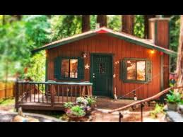 tiny cabin surrounded by giant redwood trees beautiful small