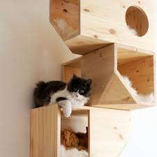 Cat Gyms Cat Tree Uk The Uk U0027s Largest Online Retailer Of Cat Trees And