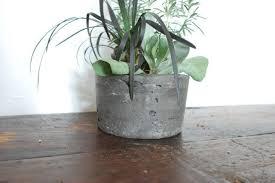 custom made charcoal colored concrete succulent planter succulent