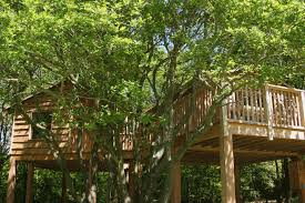 into the woods isle of wight tree house hotels condé nast