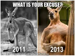 Kangaroo Meme - kangaroo after workout by demot meme center