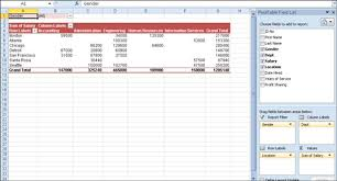 how to pivot table how to format an excel 2010 pivot table dummies