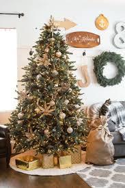 best 25 noble fir christmas tree ideas on pinterest simple